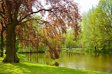 Holland-Amsterdam-Το Vondelpark