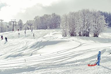Grevena-Vasilitsa ski center
