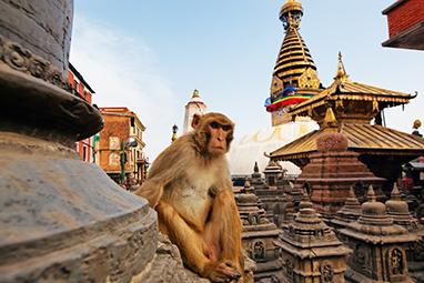 Nepal-Kathmandu-Swayambhunath Stupa