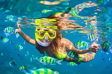 Indian Ocean-Maldives-Banana Reef