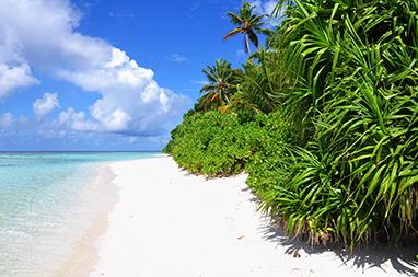 Indian Ocean-Maldives-Νησί Alimatha