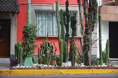 Mexico-Mexico city-Coyoacan