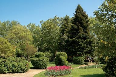 Naoussa-Municipal park