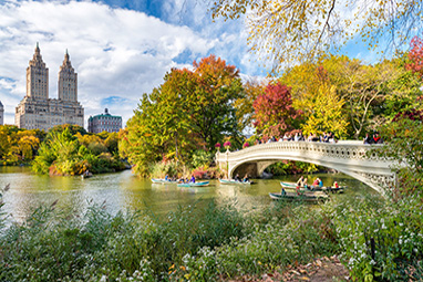 USA - New York - Central Park