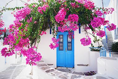 Cyclades - Paros - Naoussa
