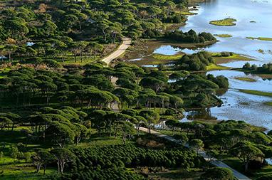 Peloponissos - Patra - Wetland of Kotychi - Strofilia