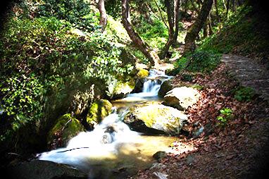Thesalia-Pelion-Hiking