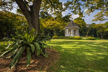 Singapore-Βοτανικοί Κήποι της Σιγκαπούρης