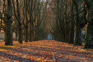 Peloponnissos-Vytina-Love Road