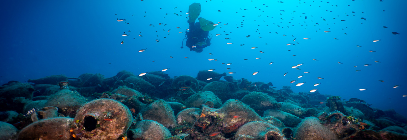 Καταδυτικά ταξίδια Dive in History